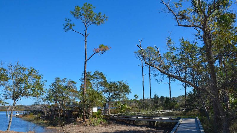 Dutton Island Preserve