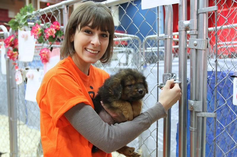 Best Friends Super Adoption MUTTography 20120428_IMG_9461.jpg