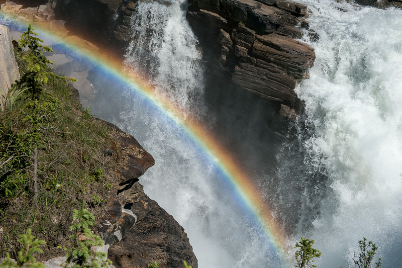 Rainbow - Athabasca  Falls