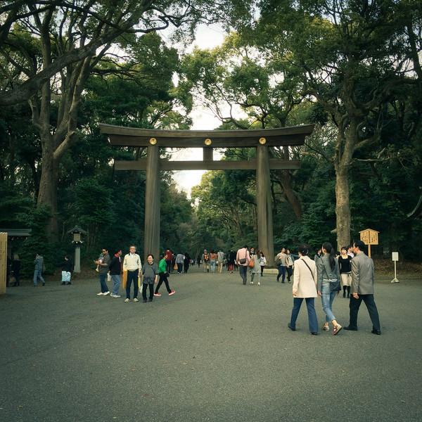 Meiji Shrine, Harajuku, Tokyo, Japan