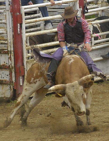 Coombs Bullarama 2008-2-189A.jpg
