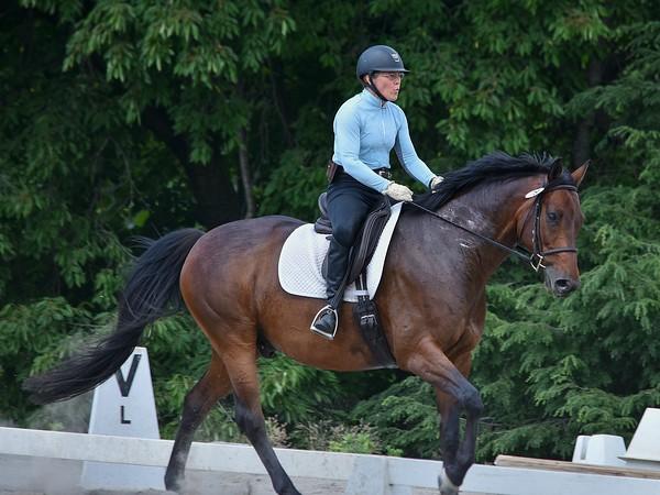 #78  Lynn Egan - Horse 1