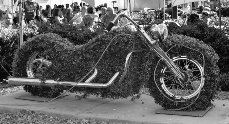 Bikes and Bikers