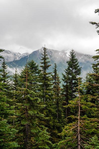 20110714 Mt Ranier 006.jpg