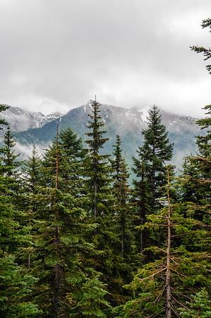 20110714 Mt Rainier