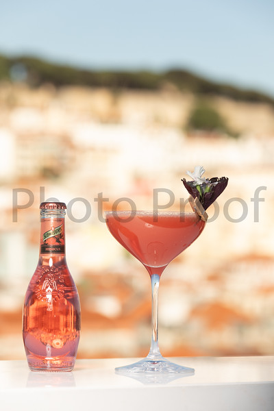 BIRDSONG Schweppes Cocktails 215.jpg