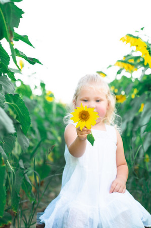 Stacey's Sunflower session