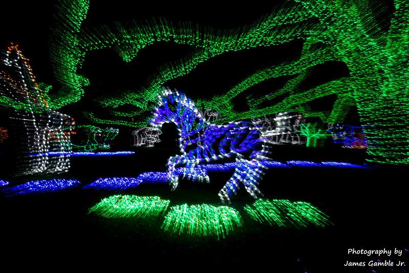 Houston-Zoo-Lights-2907.jpg