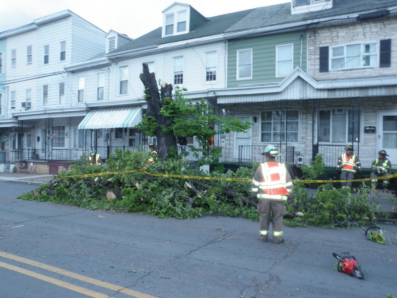mahanoy city tree incident 5-8-2010 043.JPG
