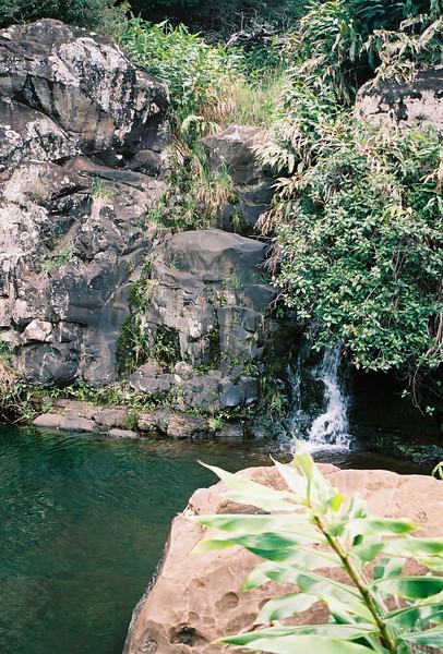 Hawaii-599.jpg