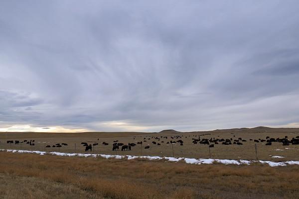 November 22:  Casper, Wyoming .  .  .
