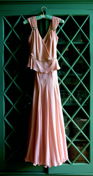 Diane Erramo Dress.jpg