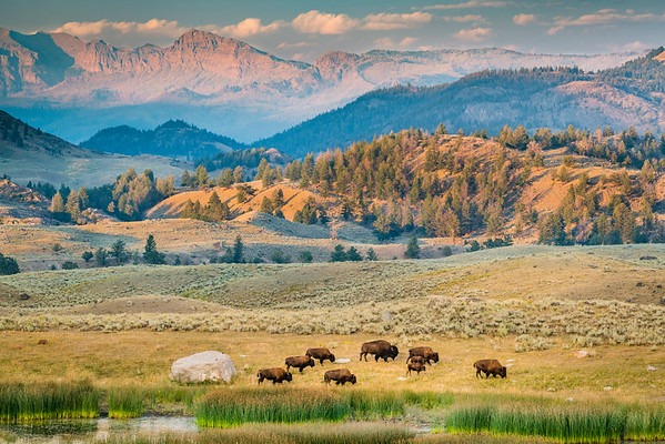 Wyoming Summer 2017
