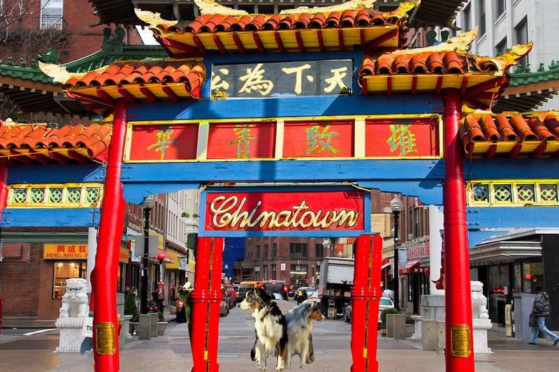Chinatown.GaWy.jpg