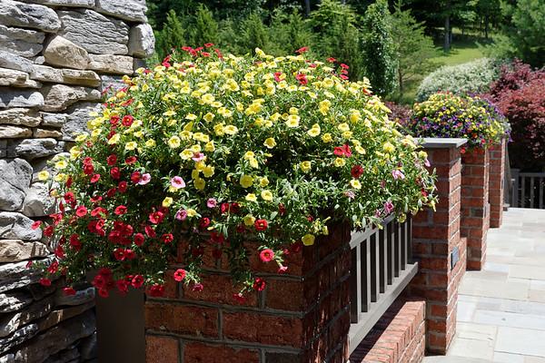 Garden Club  of Huntington, WV (41 Images)