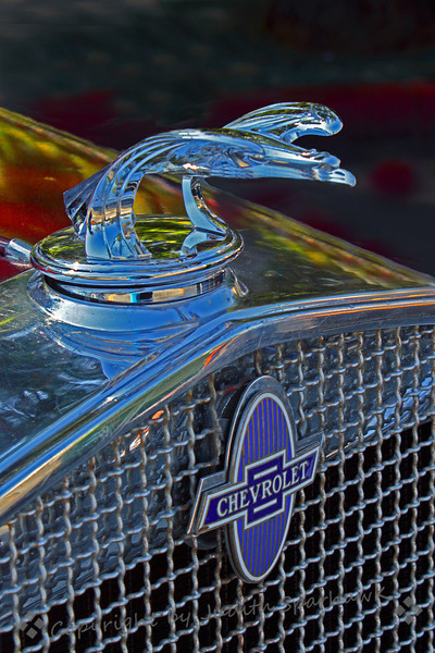 Chevy Eagle ~ This Chevrolet hood ornament was photographed at the Route 66 Rendezvous celebration in San Bernardino, California.
