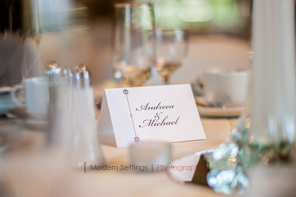 Michael + Andreea  |  Wedding Day