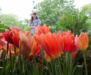 May 2012 at the Dallas Arboretum