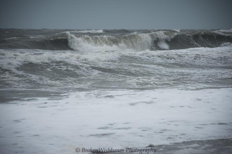 2017_Hurricane_Irma_Pre Storm_26 (1 of 1).jpg