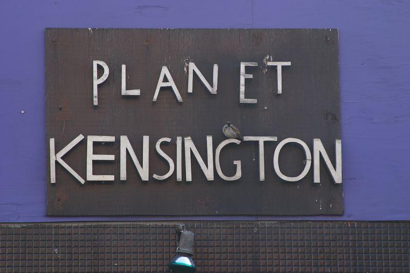 Planet Kensington