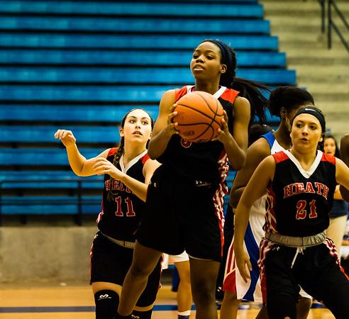 Basketball, 2016, 12-09-16, Lady Panthers,JV-7