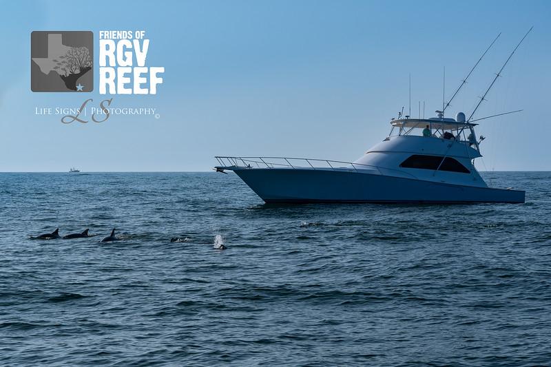 LS - People - RGV Reef-5.jpg