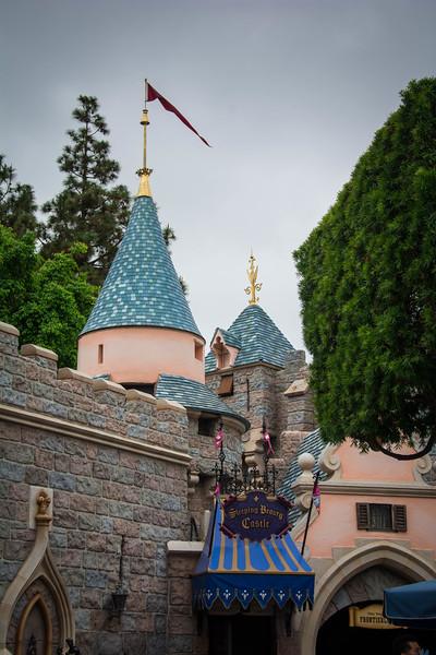 Disneyland-90.jpg
