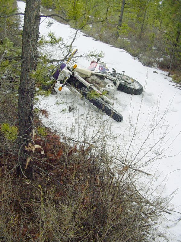"<font size=""+2"">Another view of the crash site.  No sign of the ""black box recorder"" yet.  Investigators are still trying to peice the actual chain of events together.  Fortunately, alcohol was not involved for a change."