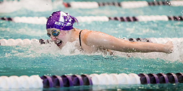 Northwestern University Swimming