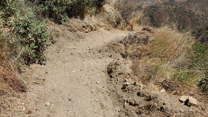20190810045-Los Pinetos trailwork.jpg