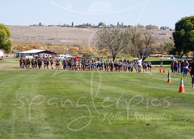 2014 HS Cross Country