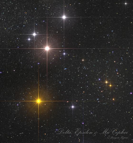 Cepheus-SkyDive-DeltaCep.jpg