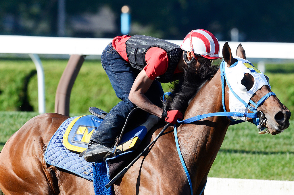 . Jockey Jose Ortiz breezed Moreno, trained by Eric Guillot, on Saturday morning at the Main Track on the Saratoga Race Course, set to run in the Travers. Photo Erica Miller 8/17/13 Moreno3