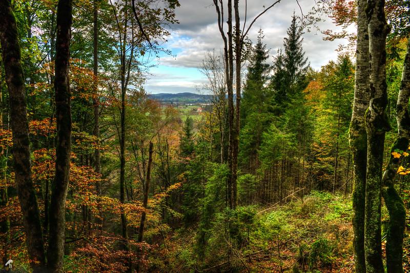 2014.Germany-1293-.jpg