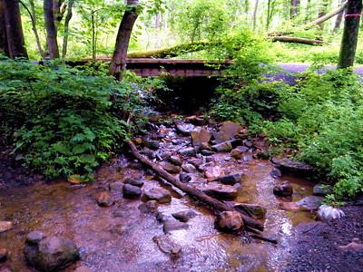Jacobsburg State Park Hike