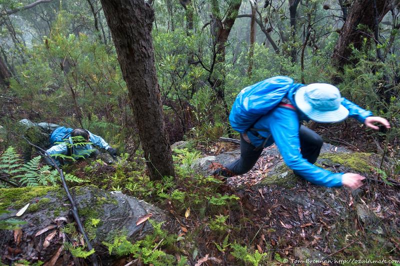 Climbing Stevos Pass