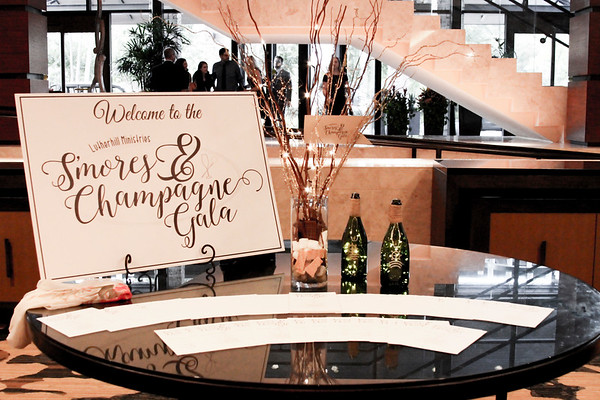 Smores and Champagne Gala 2018