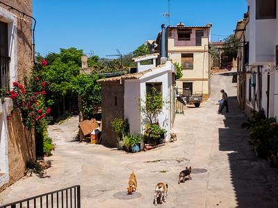 Mascarell,v Castellon