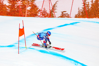 Race Two Men (FIS and USSA)