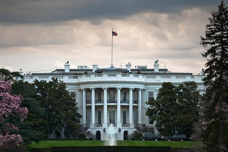 white house-2.jpg