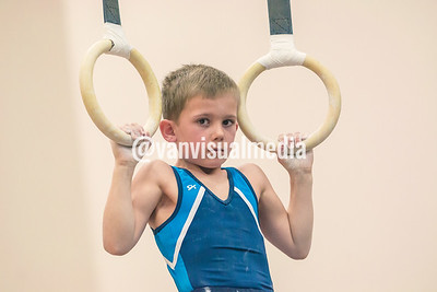 State Gymnastic Tournament