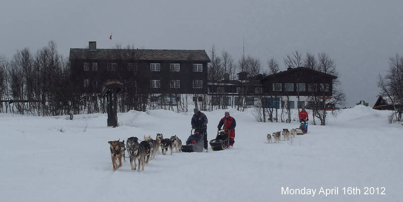 Dog sledge at Venabu April 16th 2012.jpg