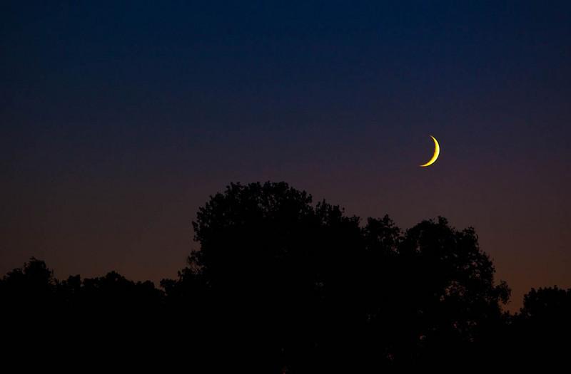 August Sunset-9.jpg