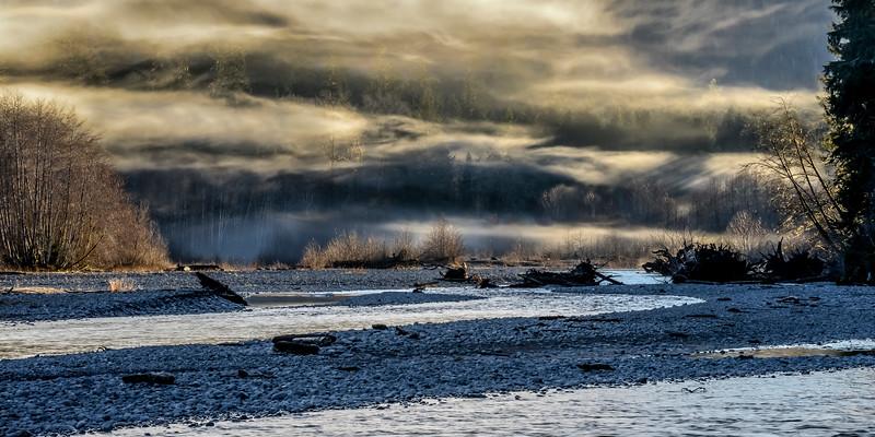Evening fog, mid winter, upper Hoh Valley