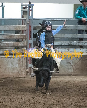 Riding Roping Tying and Wrestling