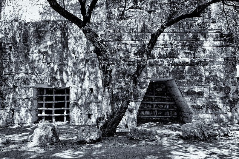 San Antonio Japanese Garden--6.jpg