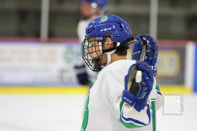 Varsity Hockey vs Duluth Denfield