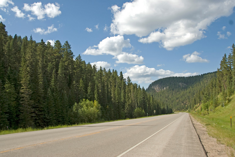 Road to Black Hills National Forest in South Dakota