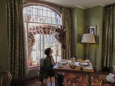 Giraffe Manor 2018