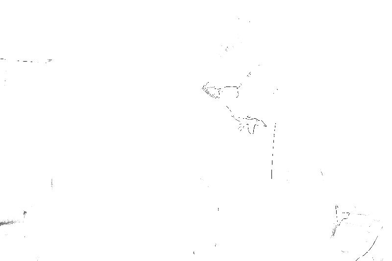 DSC09009.png